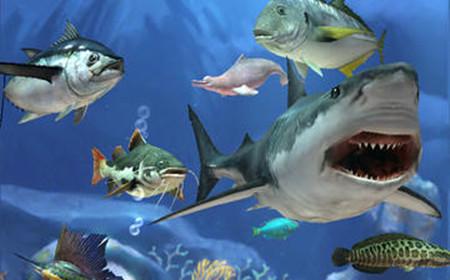 壁纸 海底 海底世界 海洋馆 水族馆 450_280